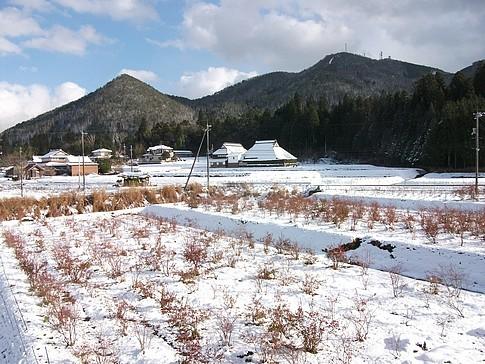 f:id:akinosato:20141213191634j:image