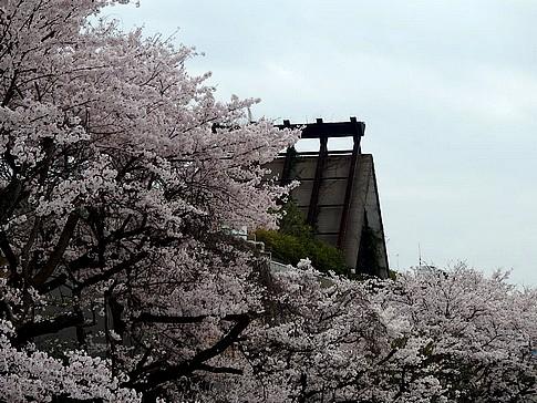 f:id:akinosato:20150402161944j:image