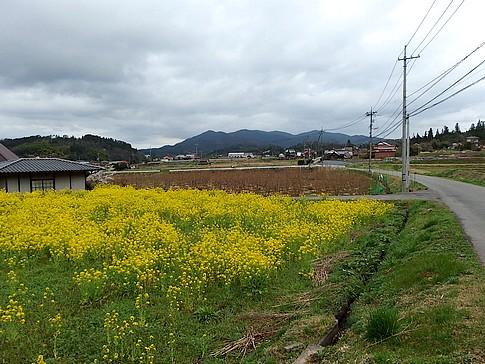 f:id:akinosato:20150405165841j:image