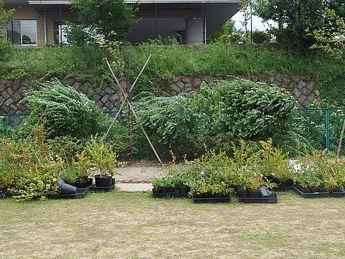 f:id:akinosato:20150825153507j:image