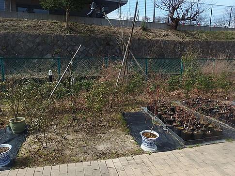 f:id:akinosato:20160218105020j:image