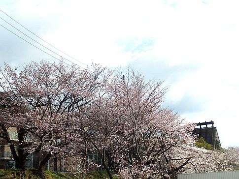 f:id:akinosato:20160401162752j:image