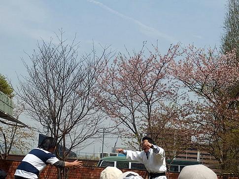 f:id:akinosato:20160409120435j:image