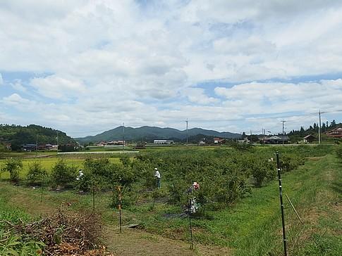 f:id:akinosato:20160820130238j:image