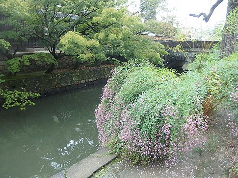 f:id:akinosato:20161001114858j:image