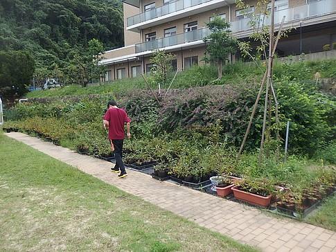 f:id:akinosato:20161004130336j:image