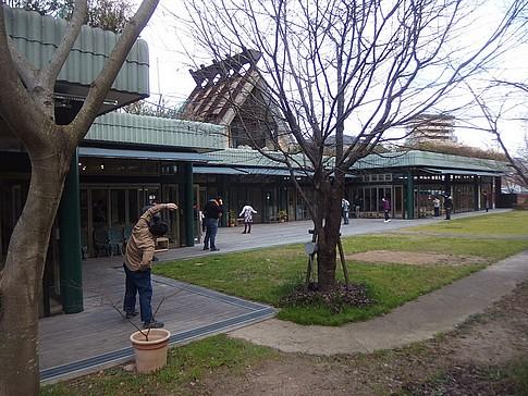f:id:akinosato:20170113101412j:image