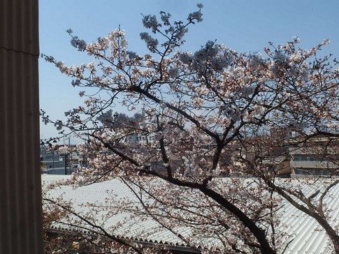 f:id:akinosato:20170403130129j:image
