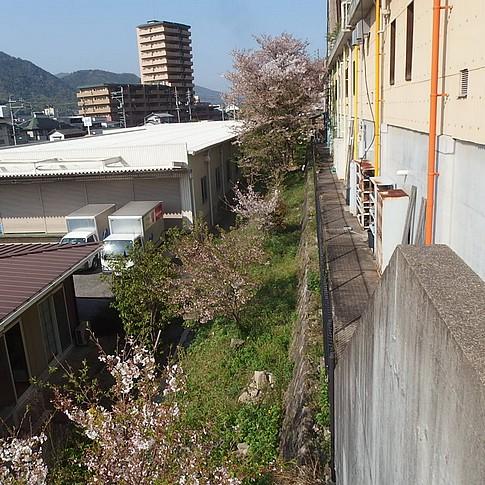 f:id:akinosato:20170414155736j:image