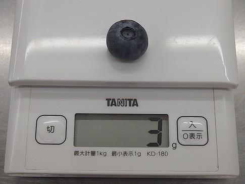 f:id:akinosato:20170607110828j:image