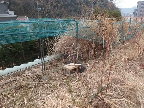 f:id:akinosato:20180215125433j:image