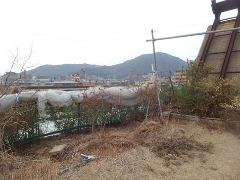f:id:akinosato:20180221164722j:image