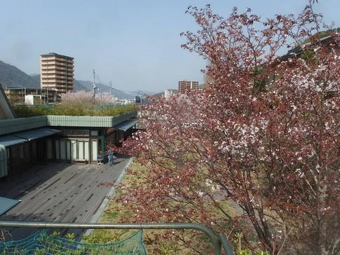 f:id:akinosato:20180402145856j:image