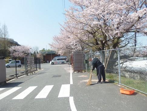 f:id:akinosato:20180403103917j:image