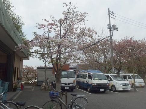 f:id:akinosato:20180405135127j:image
