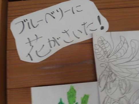 f:id:akinosato:20180422084757j:image