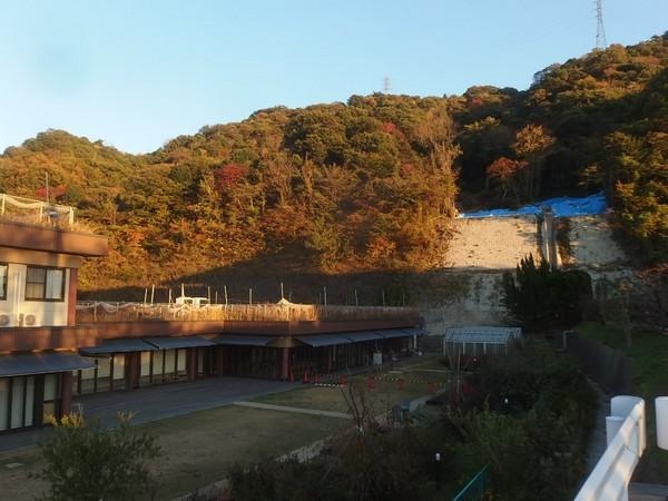 f:id:akinosato:20181114165949j:plain
