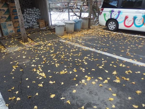 f:id:akinosato:20181122134823j:plain