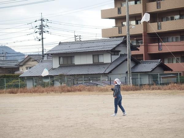 f:id:akinosato:20190124143730j:plain