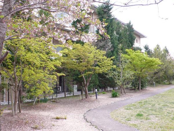 f:id:akinosato:20190412154856j:plain
