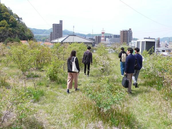 f:id:akinosato:20190417105027j:plain