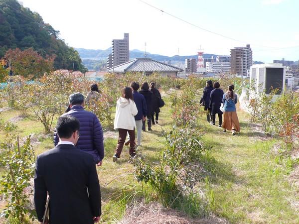 f:id:akinosato:20191120110442j:plain