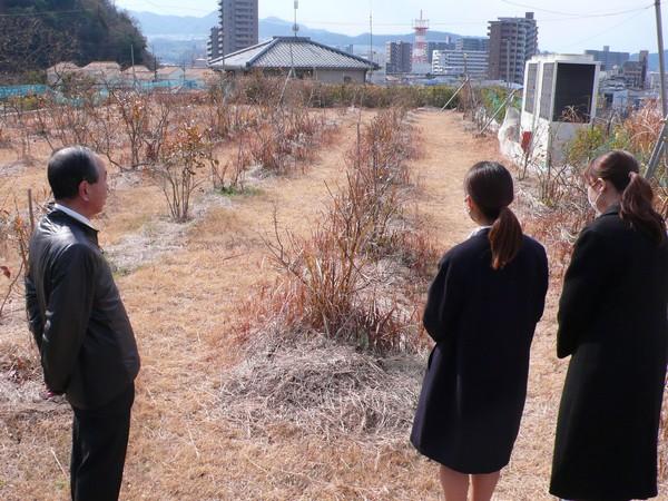 f:id:akinosato:20200210115939j:plain