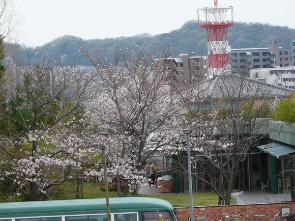 f:id:akinosato:20200330131457j:plain