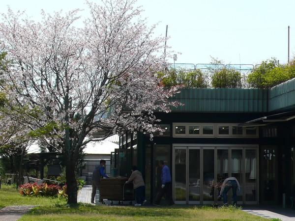 f:id:akinosato:20200402131745j:plain
