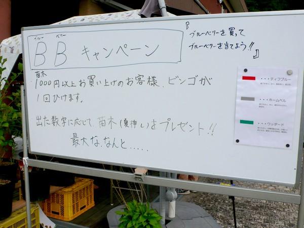f:id:akinosato:20200801173331j:plain