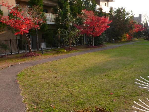 f:id:akinosato:20201208160412j:plain