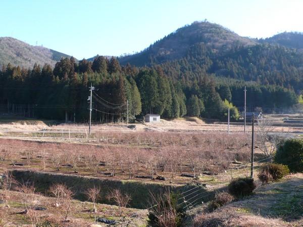 f:id:akinosato:20210206154832j:plain