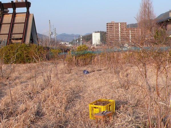 f:id:akinosato:20210210164310j:plain