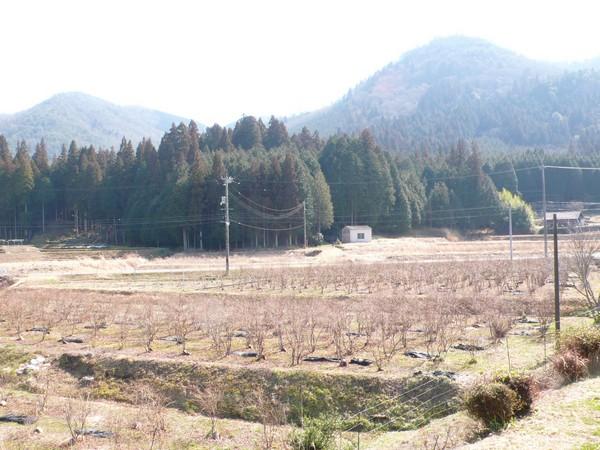 f:id:akinosato:20210221132056j:plain