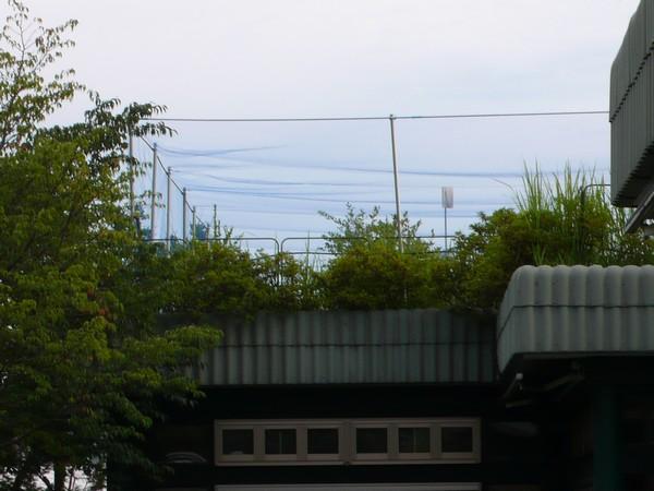 f:id:akinosato:20210710191015j:plain
