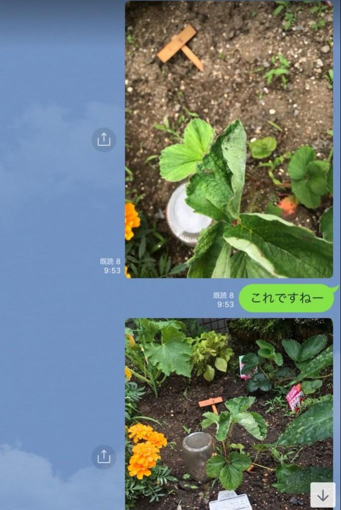 f:id:akio130:20180910211736j:plain