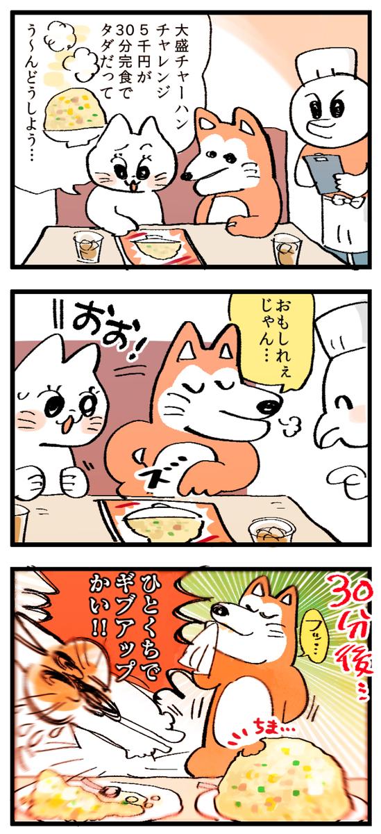 f:id:akioco:20190709050657j:plain
