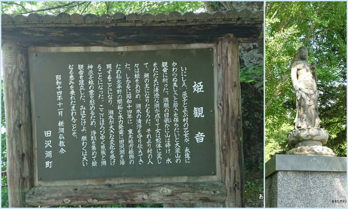 f:id:akipota:20200624172016j:plain