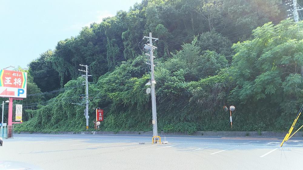 f:id:akipuyo:20170811194527j:plain