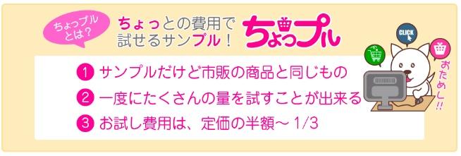 f:id:akira-5:20180704185209j:plain