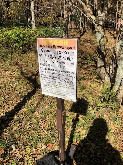 f:id:akira-fj:20201110061207j:plain