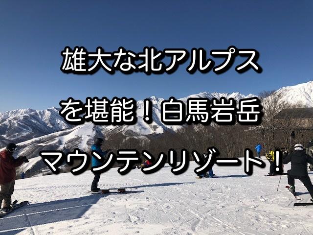 f:id:akira-fj:20210306104713j:plain