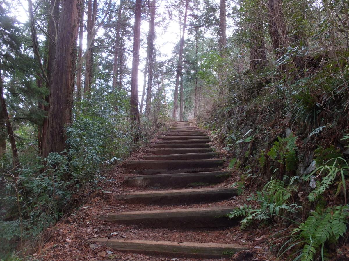f:id:akira-kami:20120128152709j:plain
