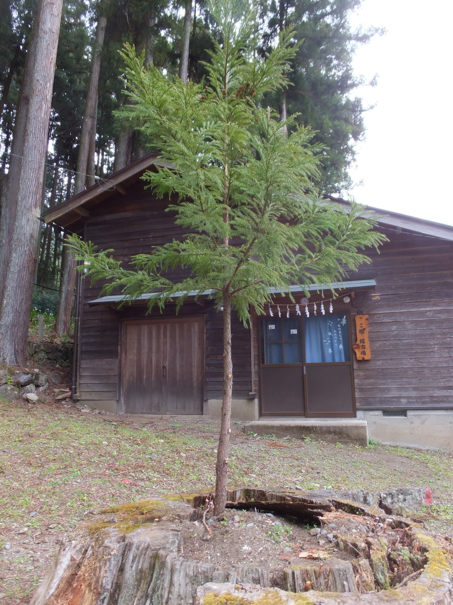 f:id:akira-kami:20120225161033j:plain