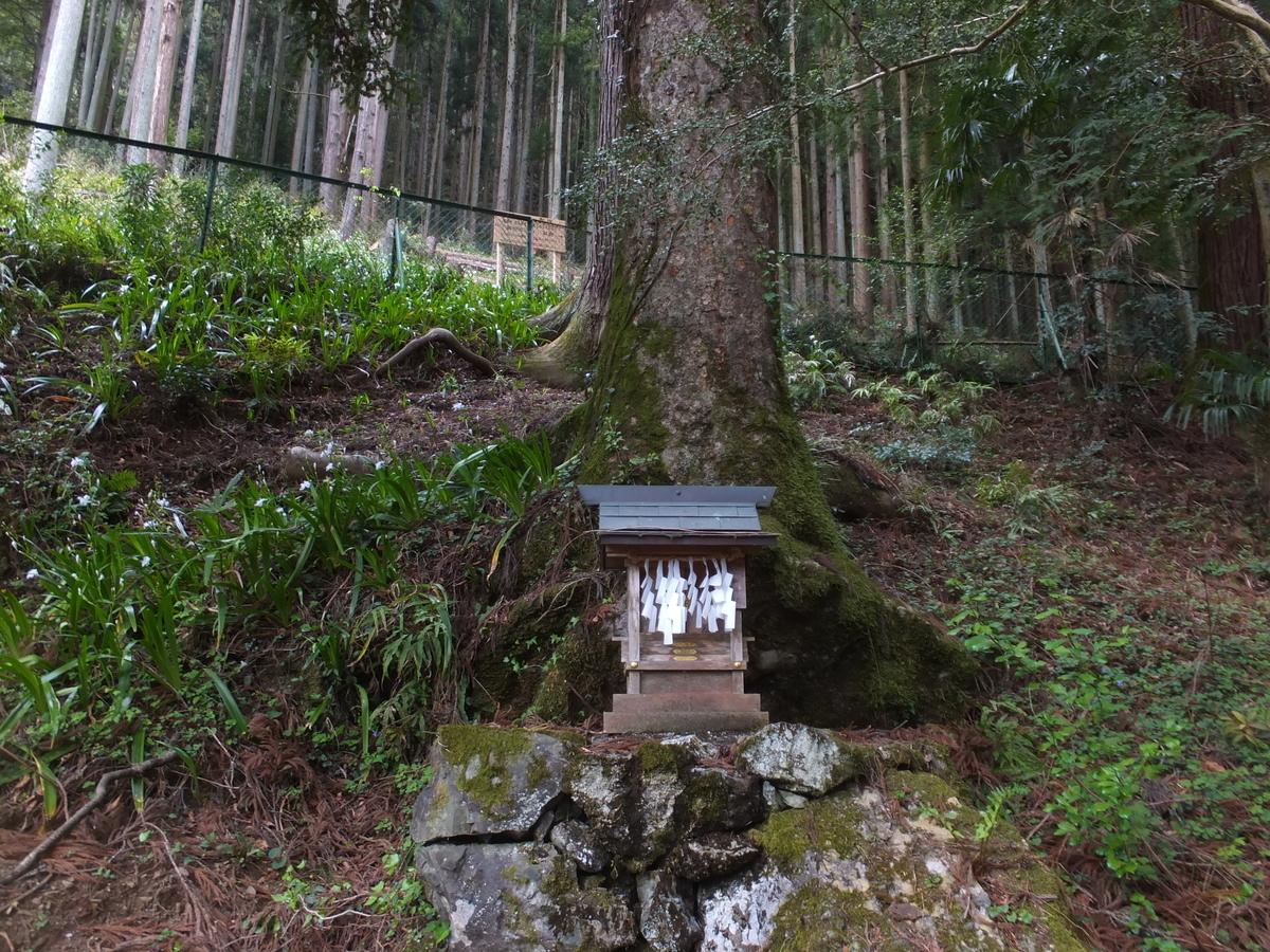 f:id:akira-kami:20120225161303j:plain