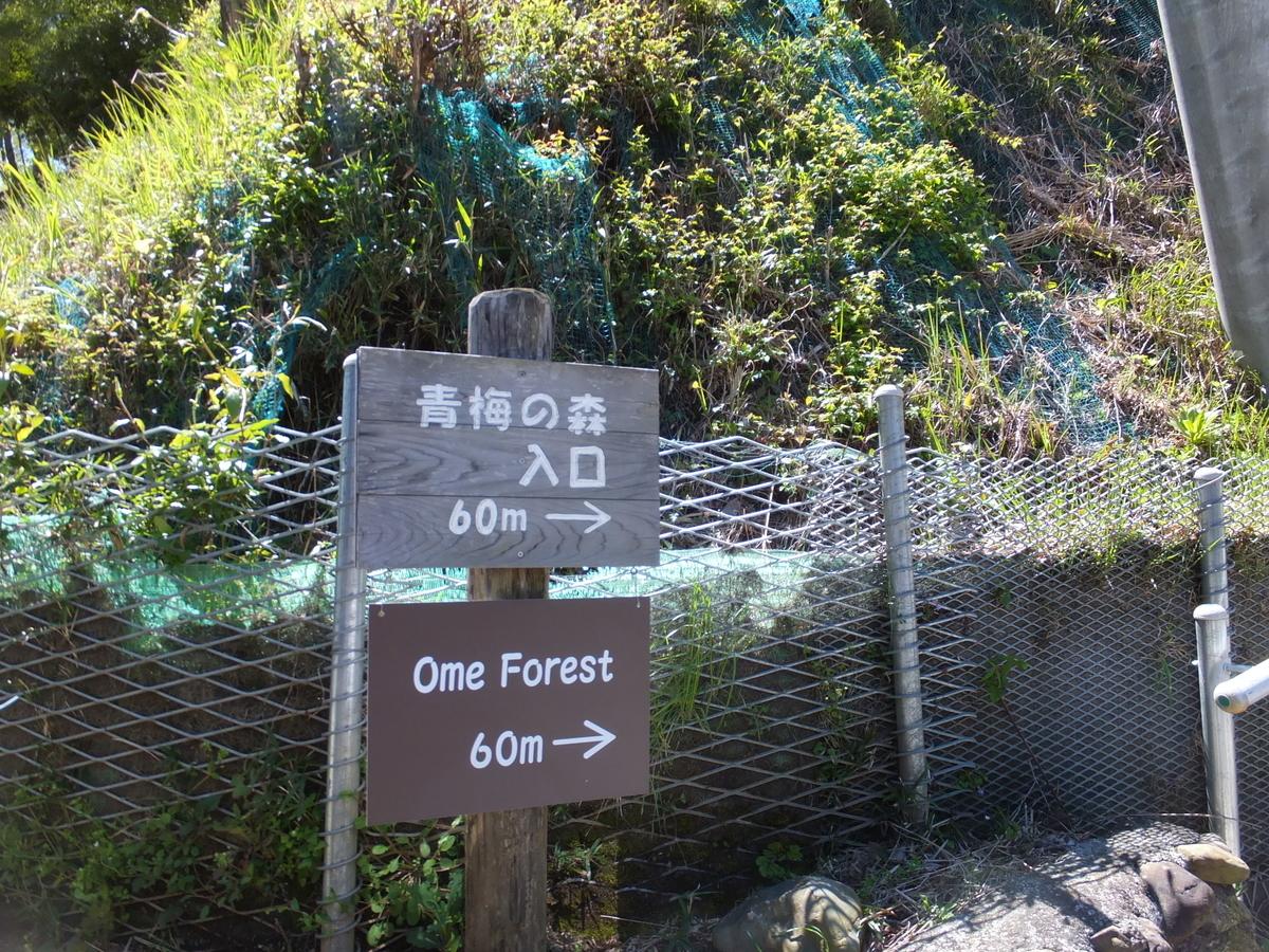 f:id:akira-kami:20120303154912j:plain