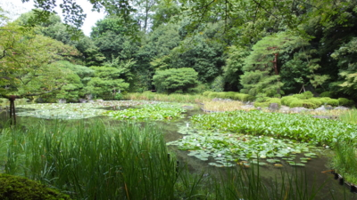 f:id:akira-kami:20120814104915j:image:w360