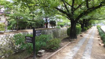 f:id:akira-kami:20120814120801j:image:w360