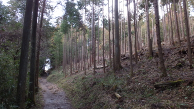 f:id:akira-kami:20130223133744j:image:w360