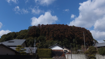f:id:akira-kami:20130224115103j:image:w360
